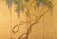 円山応挙-藤花図屏風
