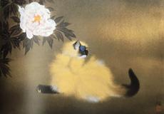 加山又造-猫に牡丹