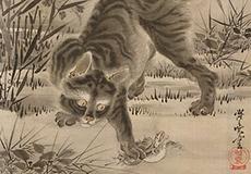 河鍋暁斎-猫図